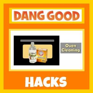 Clean your Oven without Harsh Chemicals